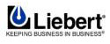 liebert ups batteries